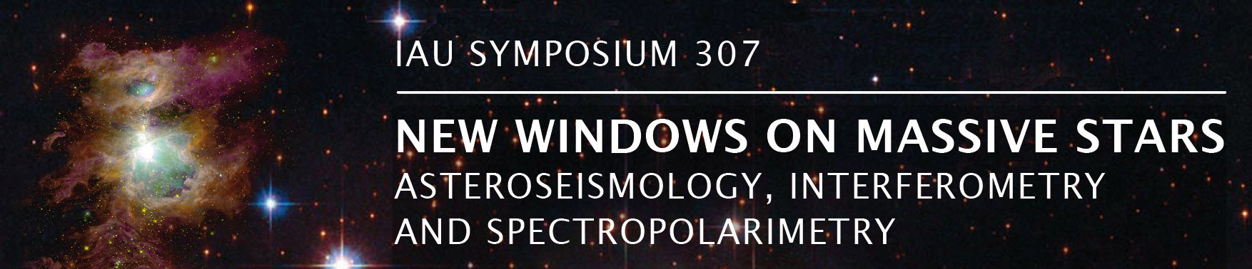 IAU Symposium 307: New windows on massive stars